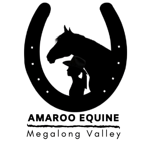 Amaroo Equine